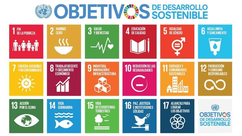 Imagen que contiene los íconos de los 17 Objetivos de Desarrollo Sostenible de la ONU - ODS. Texto indicativo sugerido: Haz clic para dirigirte al sitio oficial y conocerlos. Vínculo: https://www.un.org/sustainabledevelopment/es/objetivos-de-desarrollo-sostenible/